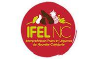 02 IFEL-Logotype-150